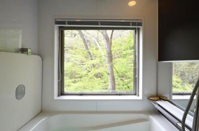 浴室 (大きな栗の木の下の家)