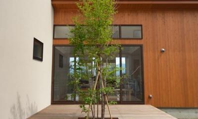 共有される光庭『ライトコート』-2|美容室と光庭の家