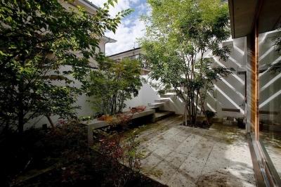 中庭 (武蔵野の家)