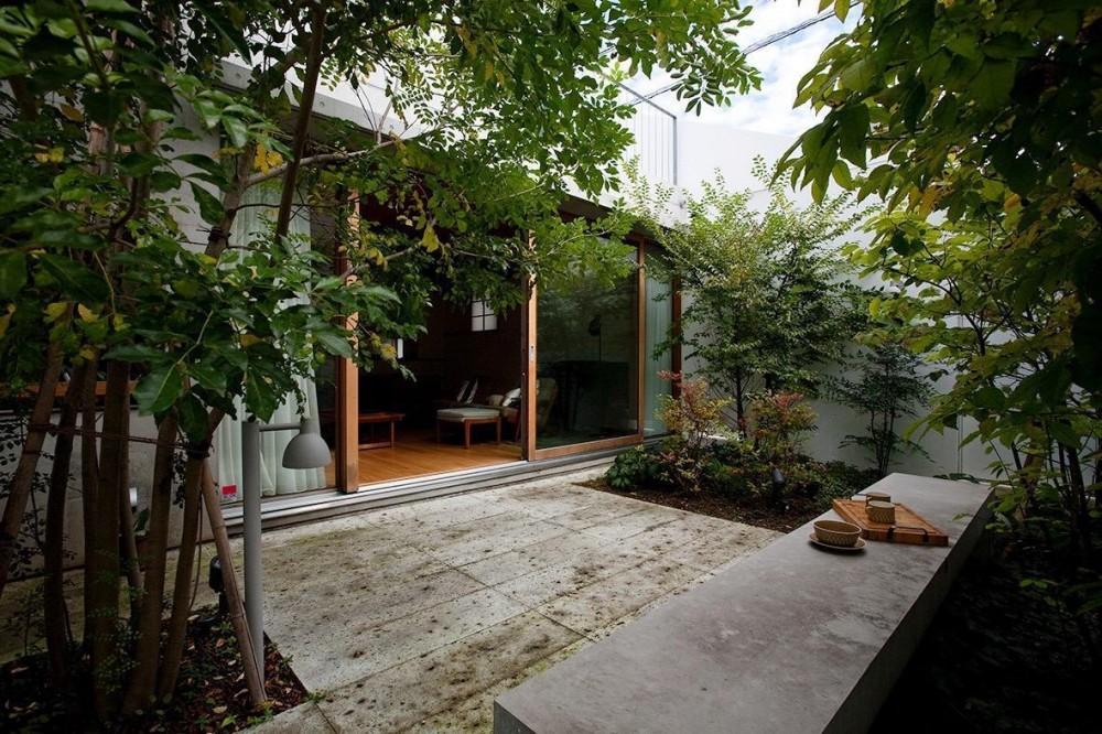 武蔵野の家 (中庭)