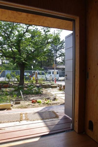 高師浜の住宅 / HOUSE in Takashinohama (リビングより庭を見る)