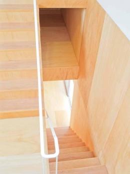 高師浜の住宅 / HOUSE in Takashinohama (階段・床下収納)