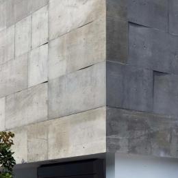 Tender concrete (外壁(撮影:杉野圭建))
