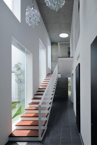 Tender concrete (光を導く階段(撮影:杉野圭建))