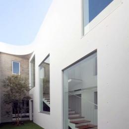Tender concrete (中庭(撮影:杉野圭建))