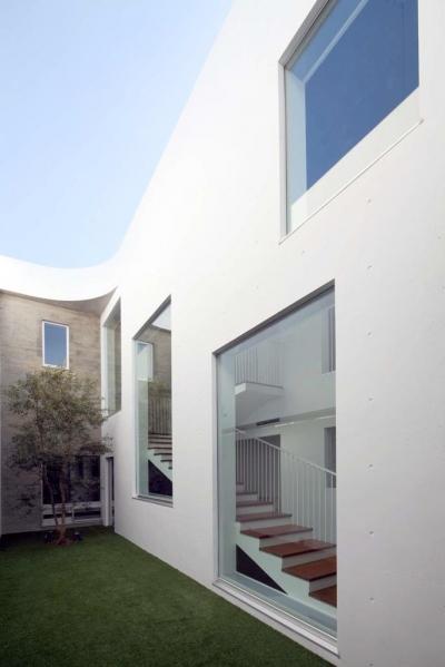 中庭(撮影:杉野圭建) (Tender concrete)