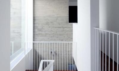 階段(撮影:杉野圭建)|Tender concrete