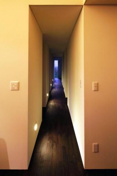 廊下(撮影:安達治) (寿都の平屋)