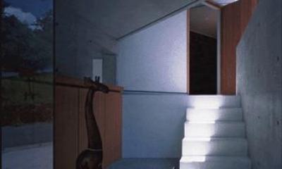 ステップテラスの家 (外を通ってから中へ入る玄関)