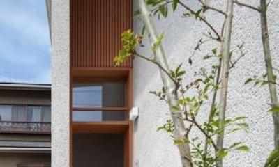 富里の家 (外より玄関を見る(撮影:Ippei Shinzawa))