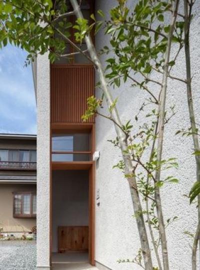 外より玄関を見る(撮影:Ippei Shinzawa) (富里の家)