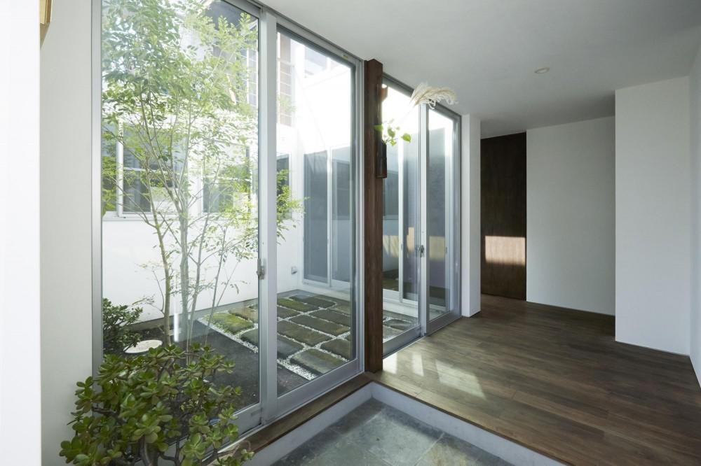鎌倉の家 旗竿敷地に建つ中庭のある家 (中庭と繋がる玄関2)
