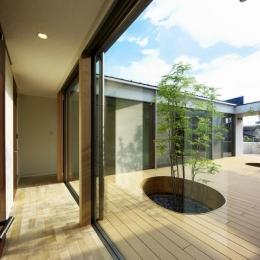 中庭を回遊する家-中庭に面した廊下