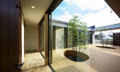 中庭を回遊する家 (中庭に面した廊下)