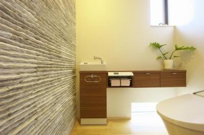 多素材の茶色い家 (トイレ1)