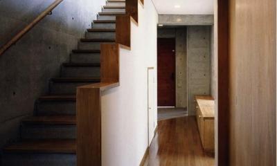 千種の家 (階段ホール(撮影:絹巻豊))