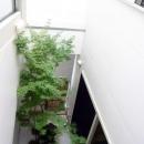 光格子の家の写真 中庭