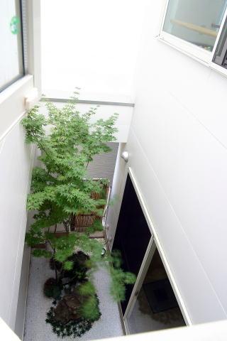 光格子の家の部屋 中庭