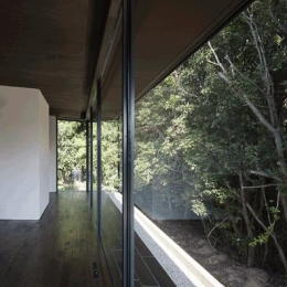 木漏れ日の家 (ガラス張りのリビング(撮影:Hiroshi Ueda))