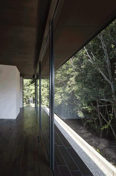木漏れ日の家の部屋 ガラス張りのリビング(撮影:Hiroshi Ueda)