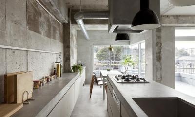 ドレスルームのあるコンクリートアパートメント (ダイニングキッチン)