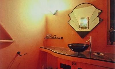 住まう人と共にリズムを刻む家 (造作家具のトイレ)