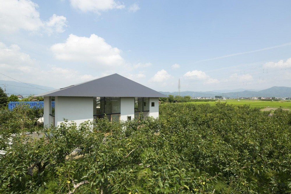 外観 (柿畑に囲まれた家)