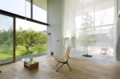 リビング (大野の家 / 柿畑を取り込む家)