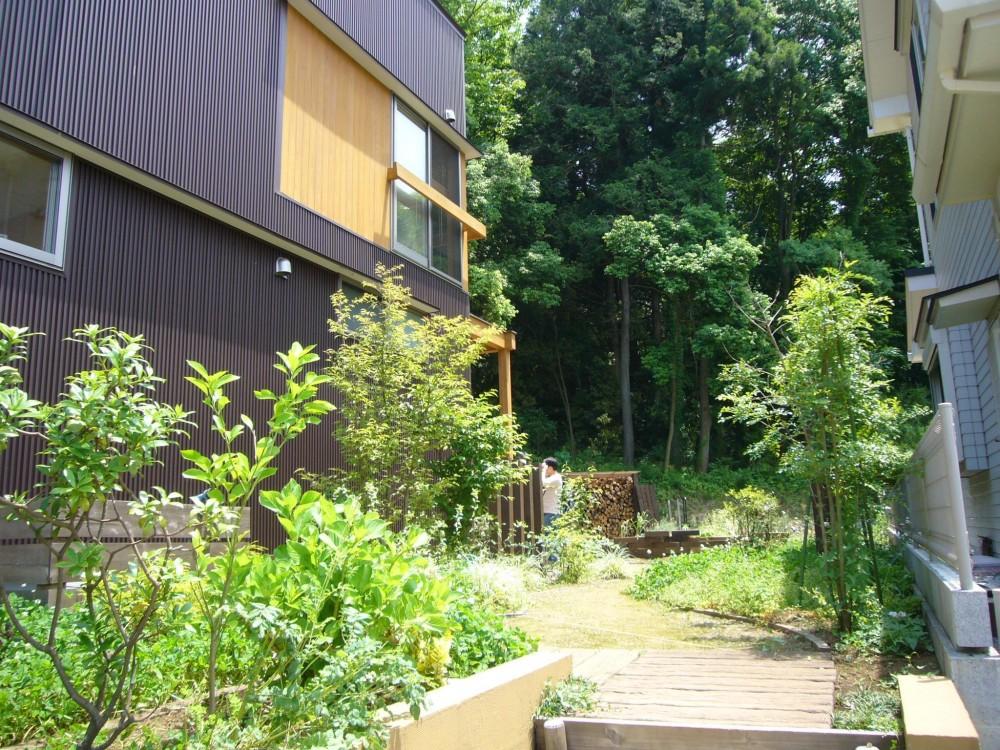 薪ストーブの木の家 スローライフ (外観)