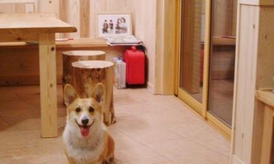 愛犬と暮らす 木の家