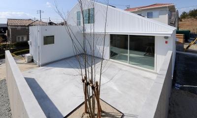 外観_中庭|桑名の家