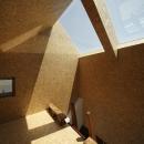 光を集める小屋空間