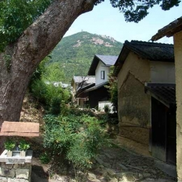 『景色と共に生きる家』〜シンボルツリーが家族をつなぐ二世帯住宅〜 (古い集落の中に佇む新しい住まい)