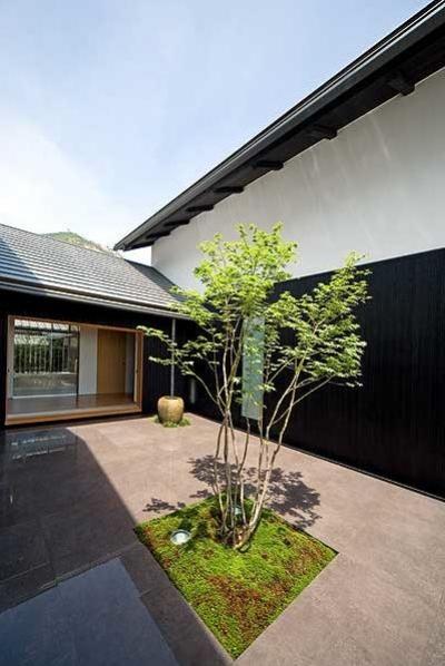 『景色と共に生きる家』〜シンボルツリーが家族をつなぐ二世帯住宅〜 (中庭のシンボルツリー)