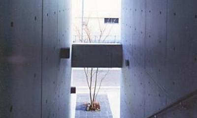 玄関アプローチ|『Sレジデンス』〜シンプルさと回遊性を重視した賃貸併用住宅〜