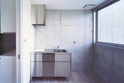 賃貸部 シンプルなステンレスキッチン (『Sレジデンス』〜シンプルさと回遊性を重視した賃貸併用住宅〜)
