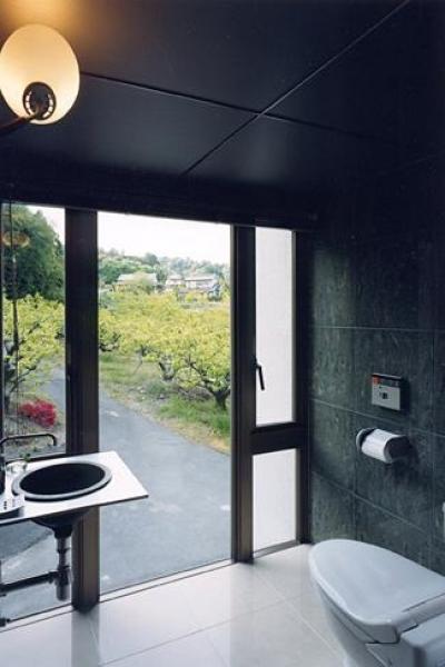 開放的なトイレ (『I-house』〜垂直・水平のラインの美しさを表現した住まい〜)