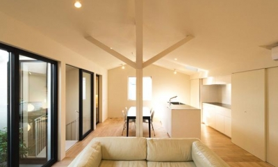 南笹口の家 〜斜め壁のある家〜 (抽象柱を据えるLDK-1)
