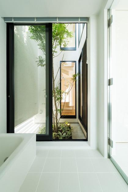 南笹口の家 〜斜め壁のある家〜 (坪庭へと続く浴室)