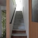 『wing』〜翼のような曲線屋根の家〜の写真 室内階段