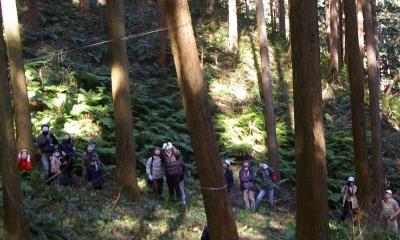 二世帯の木の家 (大黒柱の伐採風景)