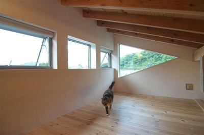 様々な機能のロフトを配置 (狭小土地に建つ自然素材で造る2世帯住宅)