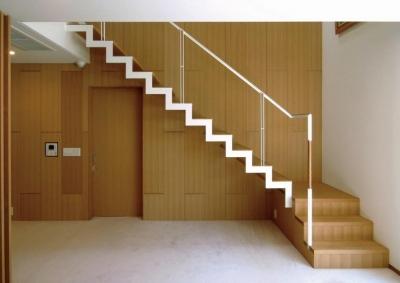 鉄骨階段 (中井の家)