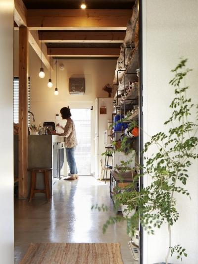 西谷の家 (土間キッチン)