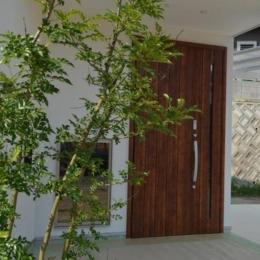 木の玄関ドア