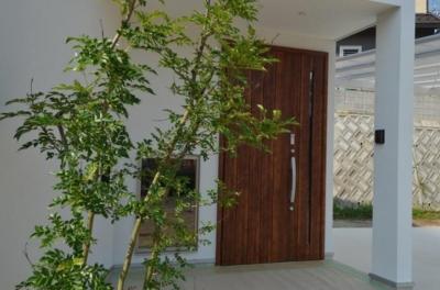 木の玄関ドア (『西条の家』中庭のある家)