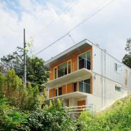 斜面に埋め込まれた家 (外観-道路側)