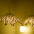 四季を楽しむ家の写真 リンゴ和紙のペンダントライト