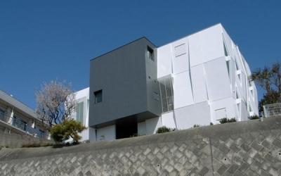 『Natural Cubes』立体キューブの賃貸住宅 (外観見上げ)