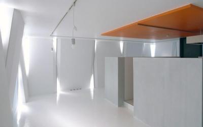 『Natural Cubes』立体キューブの賃貸住宅 (room5-回遊的ワンルーム住居)